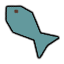 Fish_Raw